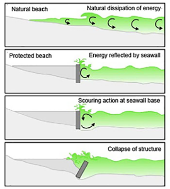 A diagram that shows how way energy can undermine seawalls and eventually cause failure. NOAA