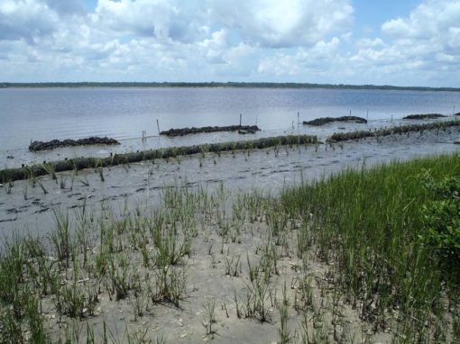 Wrights Landing (St. Johns County)